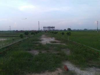 1350 sqft, Plot in Builder Godhana Chandoli, Varanasi at Rs. 18.0000 Lacs