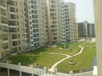 1160 sqft, 2 bhk Apartment in TDI Wellington Heights Sector 117 Mohali, Mohali at Rs. 7500