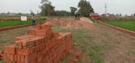 1200 sqft, Plot in Builder EXEL City Bikram Bihta Road, Patna at Rs. 9.0120 Lacs
