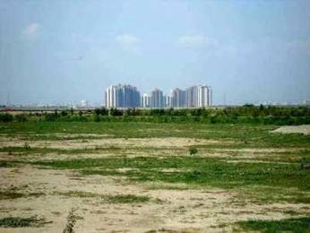 900 sqft, Plot in Builder new golden city project Sector 90 95, Faridabad at Rs. 8.0000 Lacs