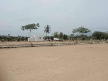 1000 sqft, Plot in Builder Project Angammal Colony, Salem at Rs. 60.0000 Lacs