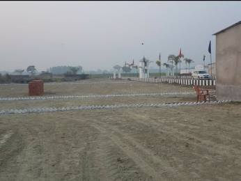 1000 sqft, Plot in Builder Galaxy farms New Jail Road, Lucknow at Rs. 1.9900 Lacs