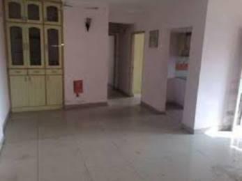 1200 sqft, 2 bhk Apartment in Ashiana Housing Ltd Ashiana Aangan Alwar Bypass Road, Bhiwadi at Rs. 35.0000 Lacs
