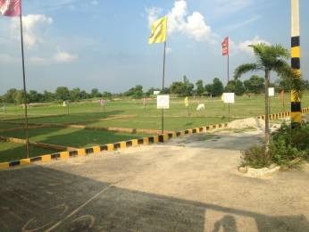 1000 sqft, Plot in Shine Paradise Garden Itaunja, Lucknow at Rs. 8.0000 Lacs