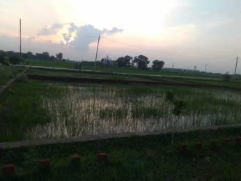 1361 sqft, Plot in Builder Chandrika nagar colony Shivpur, Varanasi at Rs. 40.0000 Lacs