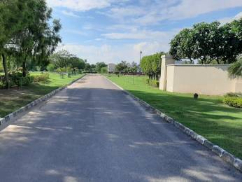 1980 sqft, Plot in Emaar MGF Developers Bungalows Sector 109 Mohali, Mohali at Rs. 42.0000 Lacs