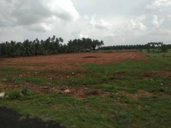 130680 sqft, Plot in Builder Land Kalapatti, Coimbatore at Rs. 9.7500 Cr