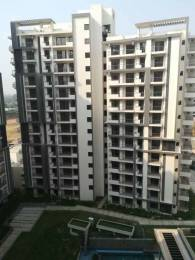 1305 sqft, 2 bhk Apartment in Godrej Oasis Sector 88A, Gurgaon at Rs. 20000