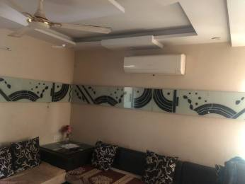 1250 sqft, 3 bhk Apartment in Builder Project Madhav Ganj, Gwalior at Rs. 46.0000 Lacs