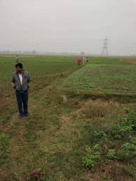 1000 sqft, Plot in Builder Newton gate IIT BIHTA, Patna at Rs. 6.5000 Lacs