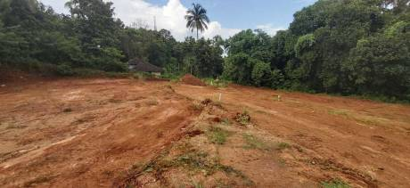 1415 sqft, Plot in Builder Project Shornur Ring Road, Palakkad at Rs. 9.9000 Lacs