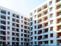 Anjali Estate Clinic