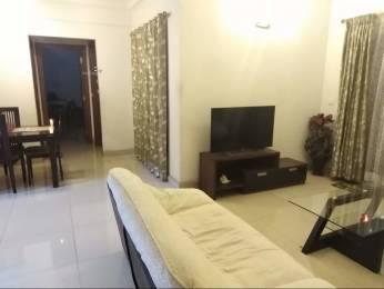 1665 sqft, 3 bhk Apartment in Builder Purva Highland Bengaluru Kanakapura Road, Bangalore at Rs. 85.0000 Lacs