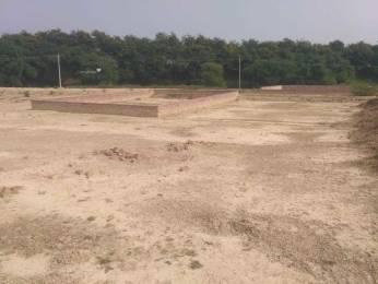 1360 sqft, Plot in Builder Chitaipur Miranagar plot Chitaipur, Varanasi at Rs. 48.0000 Lacs