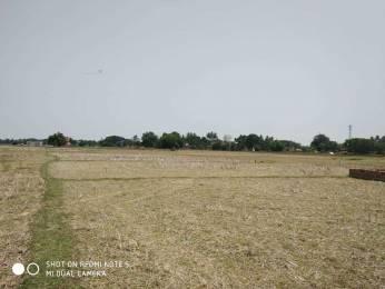 1742 sqft, Plot in Builder Sradha Vihar Trisulia, Cuttack at Rs. 15.0000 Lacs
