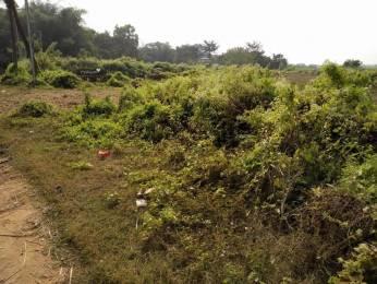 2744 sqft, Plot in Trident Galaxy Kalinga Nagar, Bhubaneswar at Rs. 16.0000 Lacs