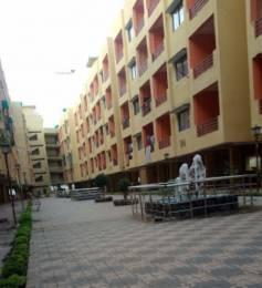 800 sqft, 2 bhk Apartment in Builder Project Vijay Nagar, Jabalpur at Rs. 10000