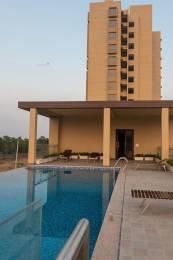 1010 sqft, 2 bhk Apartment in Mahima Bellevista Jagatpura, Jaipur at Rs. 13000