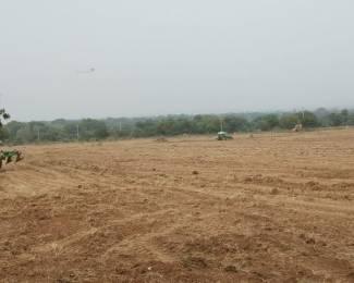 43560 sqft, Plot in Builder Project Wardannapet, Warangal at Rs. 44.0000 Lacs