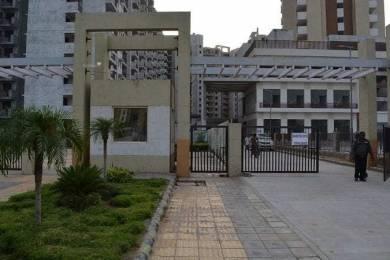 1150 sqft, 2 bhk Apartment in Terra Elegance Sector 33 Bhiwadi, Bhiwadi at Rs. 6700