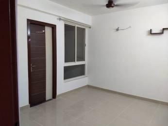 1365 sqft, 3 bhk Apartment in Aashish Acacia Jagatpura, Jaipur at Rs. 16500