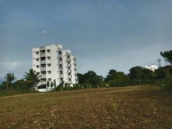 1600 sqft, Plot in Builder Project Srinivasa Mangapuram Tirumala Road, Tirupati at Rs. 33.7500 Lacs