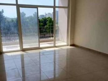 1900 sqft, 3 bhk Apartment in Wembley Wembleys Co Op House Building Society Sector 91 Mohali, Mohali at Rs. 24000