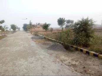 1000 sqft, Plot in Builder Project Bakkas, Lucknow at Rs. 11.0000 Lacs