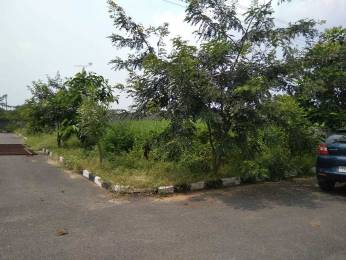1800 sqft, Plot in Builder Project Nandigama, Hyderabad at Rs. 39.0000 Lacs