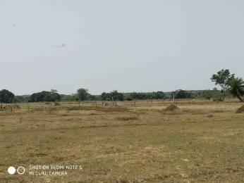 1742 sqft, Plot in Builder Sasha Vihar Trisulia, Cuttack at Rs. 13.0000 Lacs