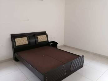 3860 sqft, 4 bhk Villa in Aparna HillPark Gardenia Miyapur, Hyderabad at Rs. 4.5000 Cr