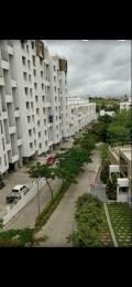 550 sqft, 1 bhk Apartment in Magnus Simpli City Phase II Handewadi, Pune at Rs. 8500
