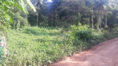 28965.654899999998 sqft, Plot in Builder Project Cherthala, Alappuzha at Rs. 80.0000 Lacs