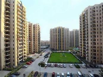 320 sqft, 1 bhk Apartment in RPS Savana Sector 88, Faridabad at Rs. 4.5000 Lacs