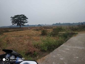 2175 sqft, Plot in Builder Resale Kuluthkani CharbhatiDhankauda Road, Sambalpur at Rs. 15.0000 Lacs