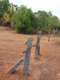 43560 sqft, Plot in Builder Land Residential Plot Manjeshwara, Kasaragod at Rs. 43.5600 Lacs