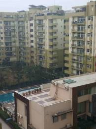8000 sqft, 5 bhk Apartment in Builder Project Urban Estate phase II, Jalandhar at Rs. 3.6000 Cr