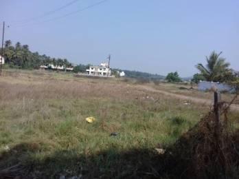 15000 sqft, Plot in Mahindra The Serenes 8 Villas Nagaon, Alibaugh at Rs. 90.0000 Lacs