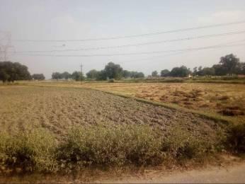 1000 sqft, Plot in Builder Project Rohaniya, Varanasi at Rs. 14.0000 Lacs