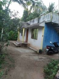 5227 sqft, Plot in Builder Project Chempazhanthy, Trivandrum at Rs. 60.0000 Lacs