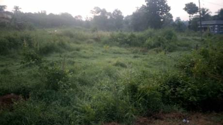 43560 sqft, Plot in Builder Project Ambalpadi, Udupi at Rs. 4.9560 Cr