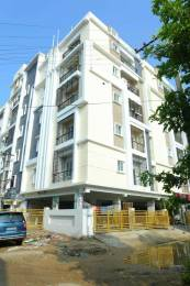 1175 sqft, 2 bhk Apartment in Builder Project AIR Bypass Road, Tirupati at Rs. 47.0000 Lacs