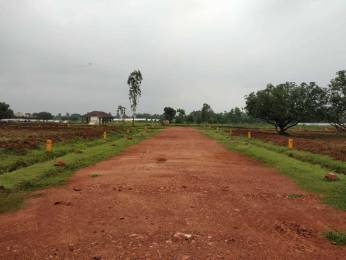 1980 sqft, Plot in Builder alluris nandanavanam Dakamarri Village Road, Visakhapatnam at Rs. 32.3400 Lacs