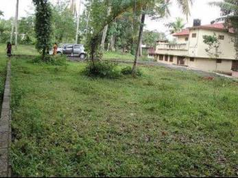 3498.2675 sqft, Plot in Builder Commercial land Pullad, Pathanamthitta at Rs. 18.0000 Lacs