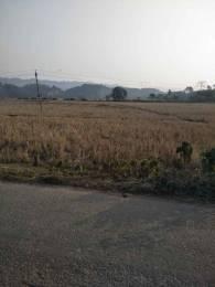 17452.0069808 sqft, Plot in Builder Project Guwahati Sonapur Road, Guwahati at Rs. 25.0000 Lacs