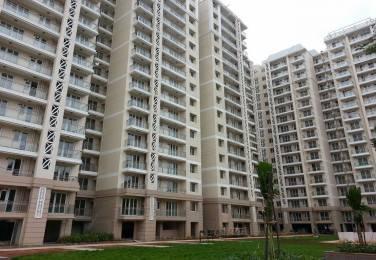 898 sqft, 2 bhk Apartment in DLF Commanders Court Egmore, Chennai at Rs. 7.0000 Cr