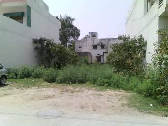 3123 sqft, Plot in Builder Gill Enclave Hira Nagar, Patiala at Rs. 97.1600 Lacs