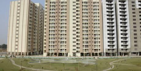 965 sqft, 2 bhk Apartment in Trehan Status Residency Sector 94 Bhiwadi, Bhiwadi at Rs. 5000
