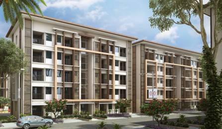 644 sqft, 3 bhk Apartment in Xrbia Warai Neral PH 1 Warai, Mumbai at Rs. 34.0500 Lacs