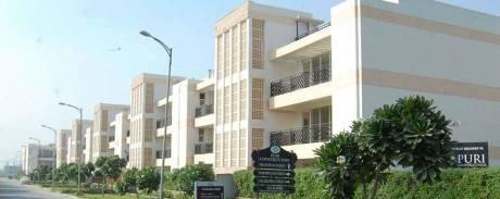 1445 sqft, 3 bhk Apartment in Puri VIP Floors Sector 81, Faridabad at Rs. 12000